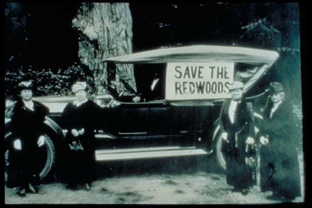 Save_the_Redwoods_ladies_ca_19